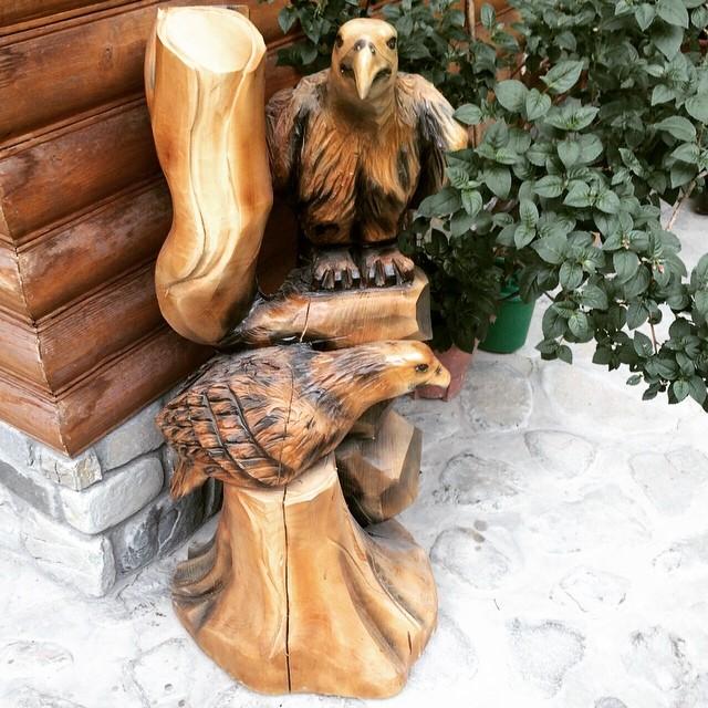 Прилетіли до #готельуЯрослава  Карпатський орел Беркут з коханою